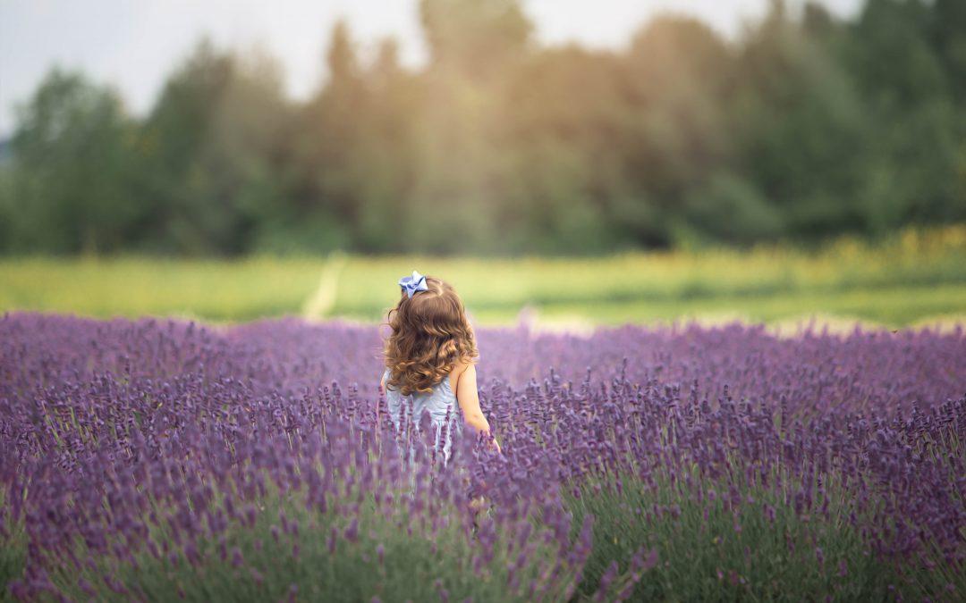 Nayara Family's photo – Lavender Farm – Canada